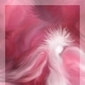 Free Angel Oracle Card On-Line Readings