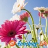 Enriching_life